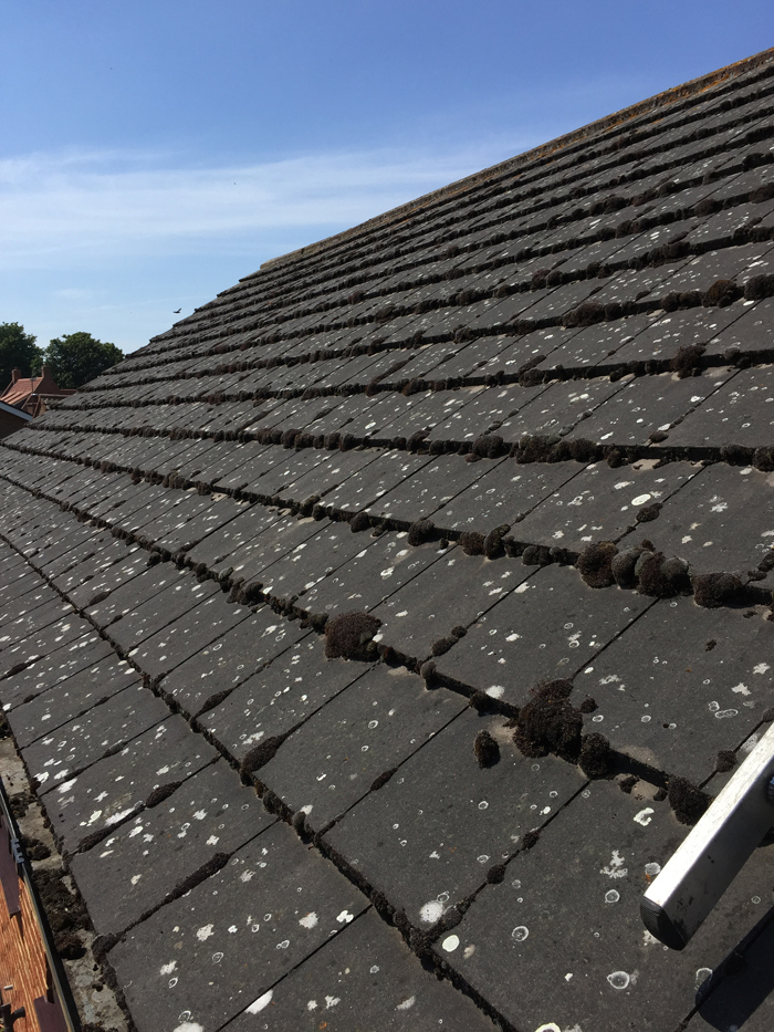 roof cleaning spalding