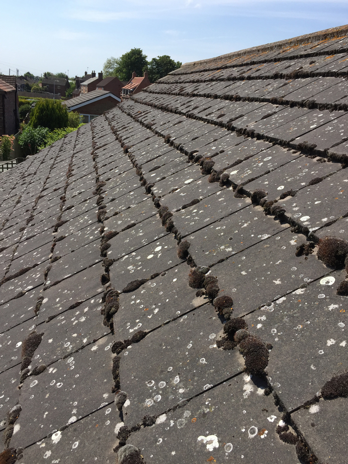 roof cleaning holbeach
